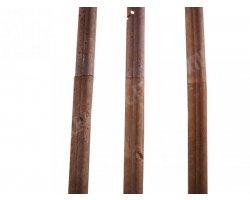 Travertin Noce Mouleur 30x4,5 cm Ogee 1 Adouci 2