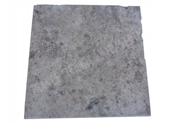 Travertin Silver Nez de Marche 40x40x3 cm Ogee   1